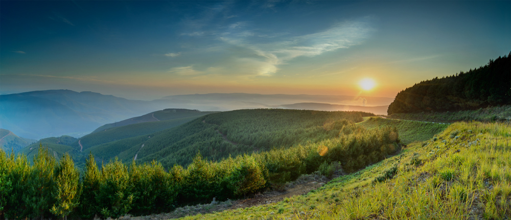 beautyful sunset green mountains and trees