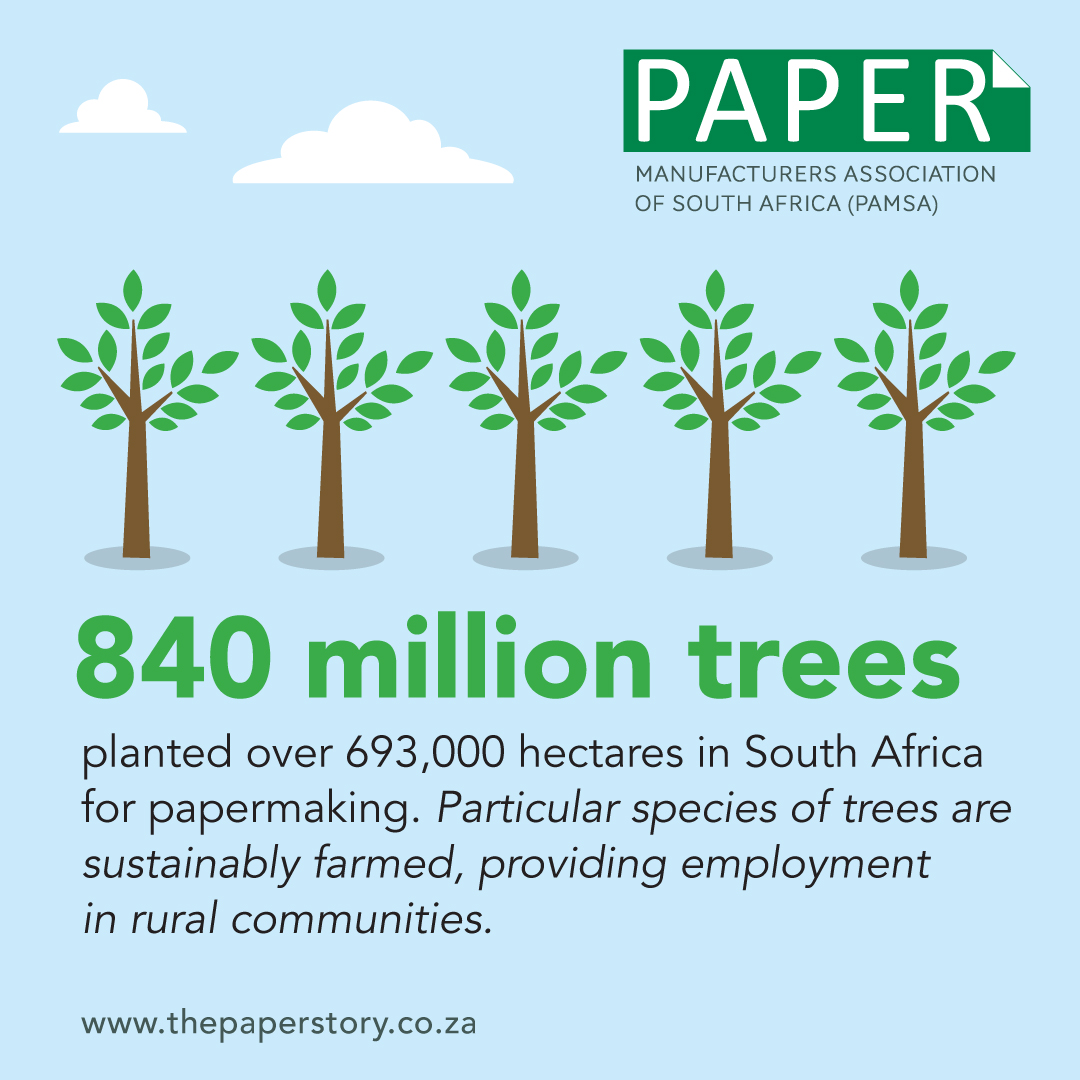 infographics about planted trees in South Africa