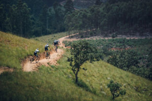 Mountain-biking---courtsey-of-MTO-Forestry
