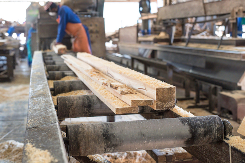 The sawmilling sector makes use of a renewable resource that can be treated to perform better than most construction materials. Credit: Ludwig Sevenster