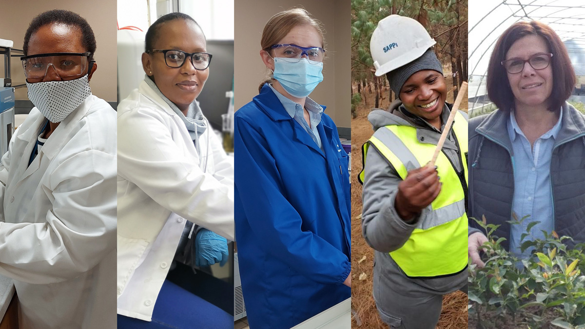 Women-in-Science-at-Sappi
